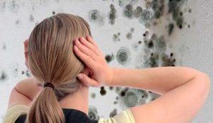 Как убрать грибок со стен в квартире