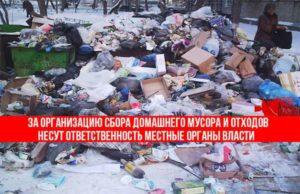 Бытовые отходы: способы решения проблемы, их утилизации в России