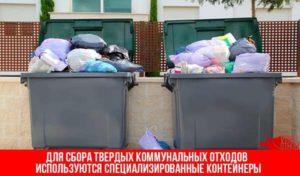Твердые коммунальные отходы: что это и правила обращения с ними